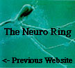 The Neuro Ring's Previous Website