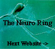 The Neuro Ring's Next Website